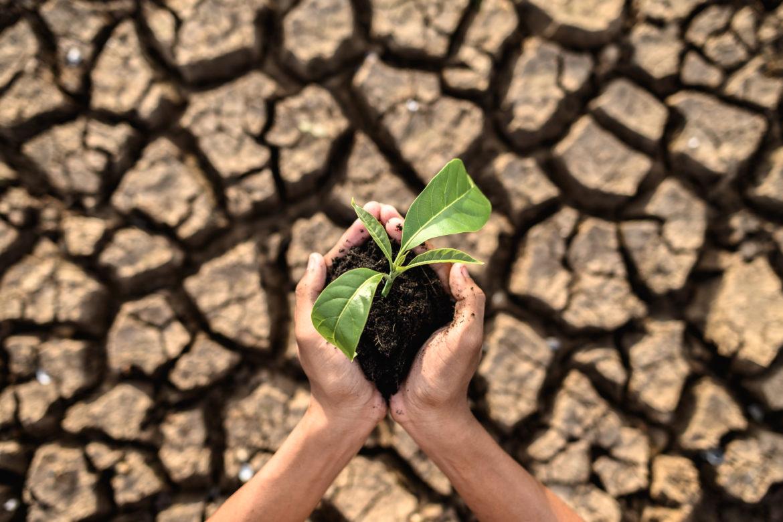 Projet de loi Climat :
